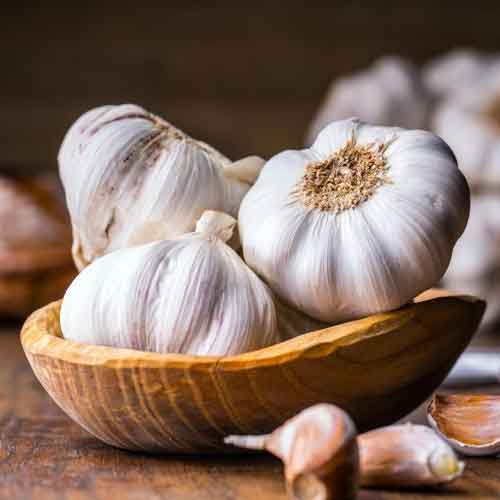How To Grow Garlic From Cloves